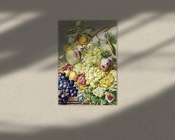 Obst, Cornelis Ploos van Amstel (1777)