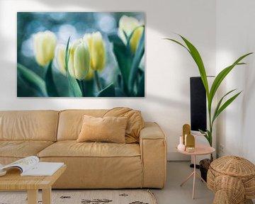 Tulpen im Licht von Martina Weidner