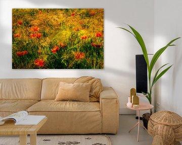 Mehrfachbelichtung Mohnblumen im Getreidefeld von Dieter Walther