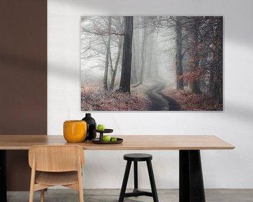 Bosweg in de mist van Peschen Photography