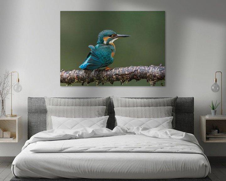 Sfeerimpressie: IJsvogel schud de veerstjes uit van Paul Weekers Fotografie