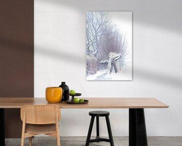 Highkey knotwilg in het Brabantse landschap. Een winter tafeleer. van Lieke van Grinsven van Aarle
