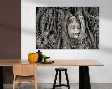 Boeddha-monument in boom van Bernd Hartner