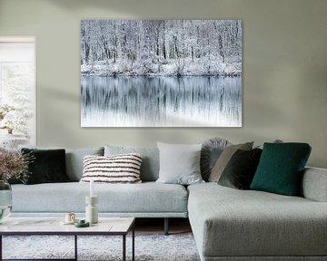 Winters landschap aan een meer van Kris Christiaens