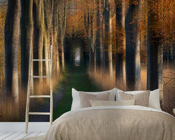 Sfeerimpressie behang: Boslaan in de herfst van Franke de Jong