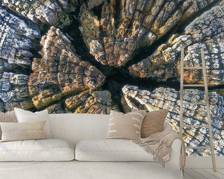 Sfeerimpressie behang: verweerd hout van Hanneke Bantje
