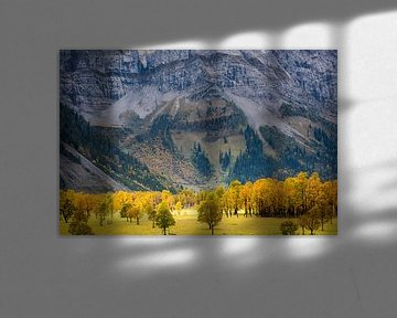 Esdoorns bij de Großer Ahornboden in Oostenrijk in de herfst met massieve rotswand van Robert Ruidl