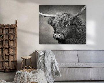 Kop Schotse Hooglander koe in zwart-wit van Marjolein van Middelkoop