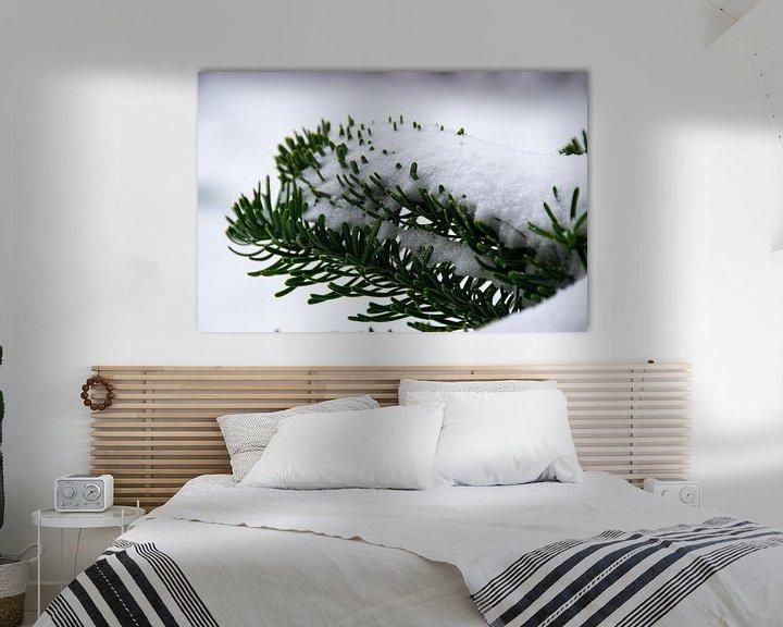 Sfeerimpressie: Dennentakken met sneeuw van Ingrid de Vos - Boom