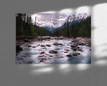 Yoho National Park, Canada van Colin Bax
