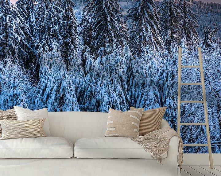 Impression: Paysage d'hiver au soleil du soir sur Jens Sessler