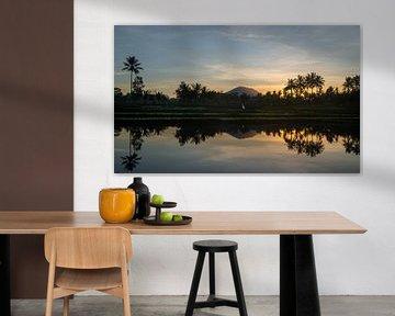 Reflectie van een zonsopkomst in een rijstveld van Bali van Ellis Peeters