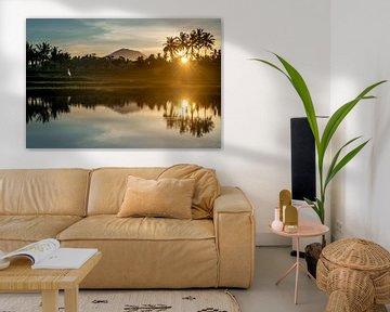 Reflexion eines Sonnenaufgangs in einem Reisfeld auf Bali von Ellis Peeters