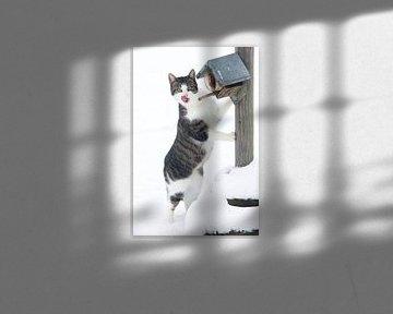 Kätzchen im Schnee von Yvonne Blokland