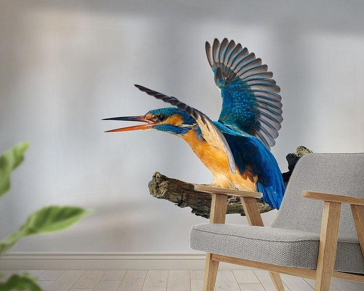 Beispiel fototapete: Eisvogel - mein Platz! von IJsvogels.nl - Corné van Oosterhout