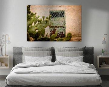 Alte Tür und ein Kaktus von Gonnie van Roij