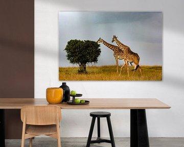 Hongerige Giraffen van Peter Michel
