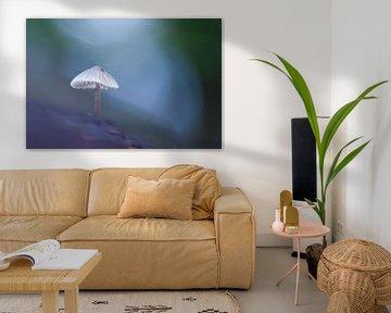 paddenstoel von Pim Leijen