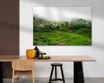 Bergdorpje met rijstvelden in Pu Luong, Vietnam van Ellis Peeters