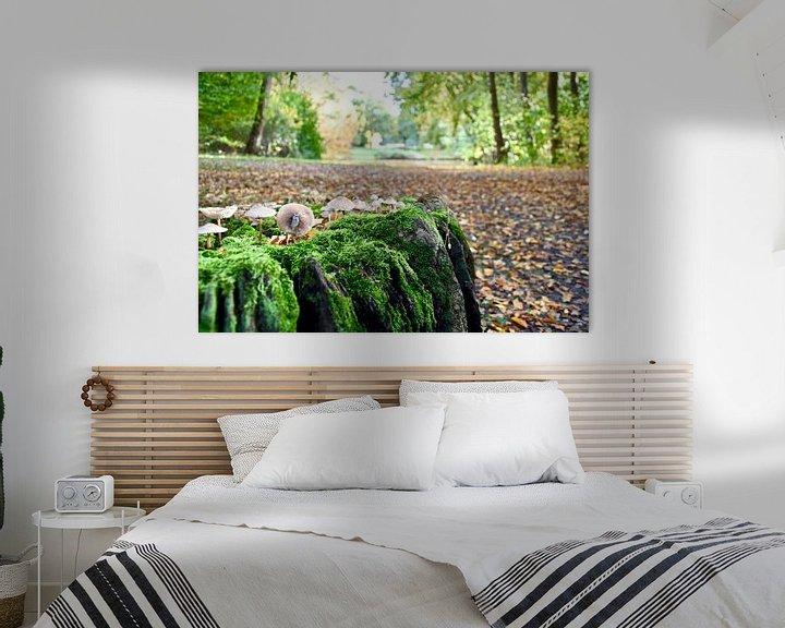 Sfeerimpressie: Herfst in het Haagsche bos van Jan Radstake