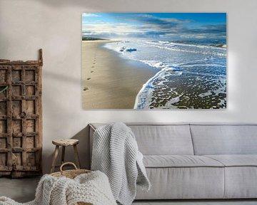 Noordzeestrand, Callantsoog