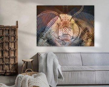 Die Biene von Andreas Schulte