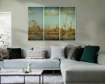 lauwersmeer drieluik 19 van anne droogsma
