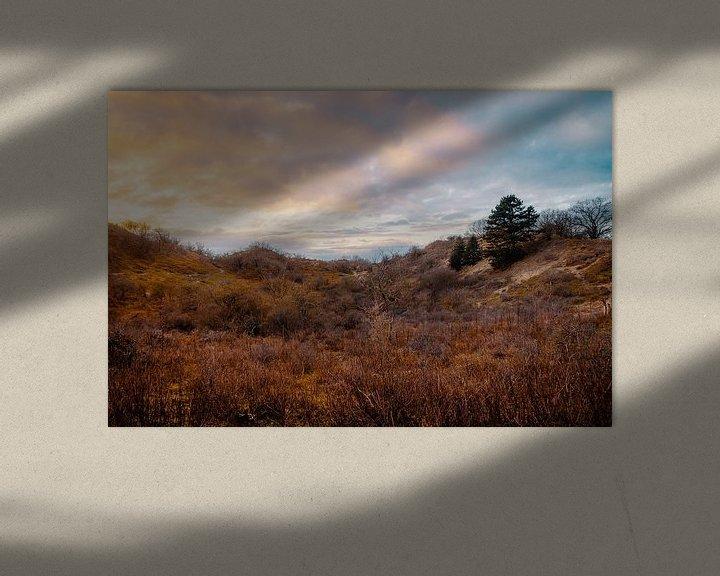 Beispiel: Meijendel-Sonnenuntergang von Paul Poot