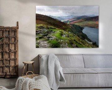 Guinness lake van Digitale Schilderijen