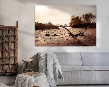 wrakhout op een rivierstrandje van Bert-Jan de Wagenaar