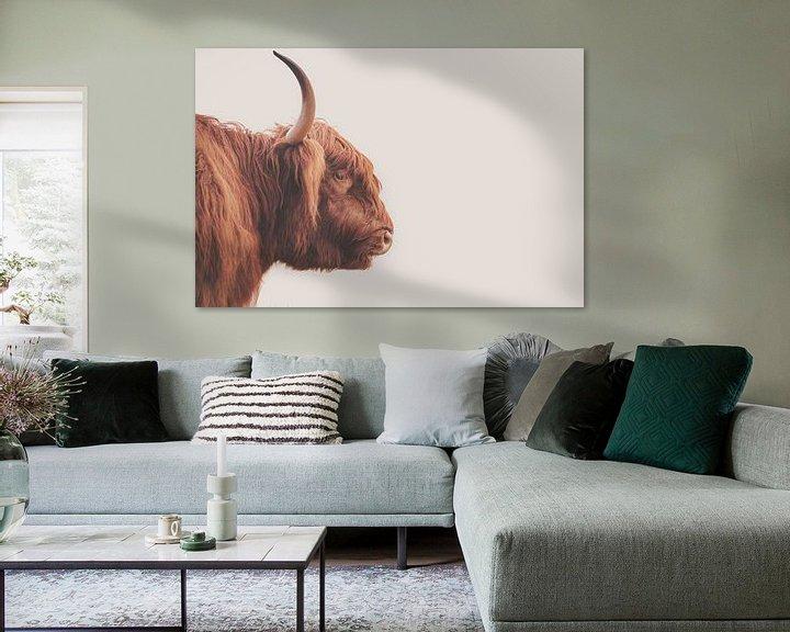 Beispiel: Schottischer Highlander-Bulle von Sander van Driel