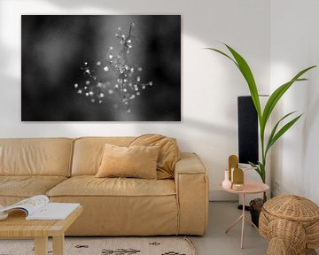 Abstract en natuur in zwart wit van Digitale Schilderijen