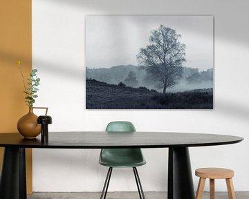 Trotste berk boom van P Leydekkers - van Impelen