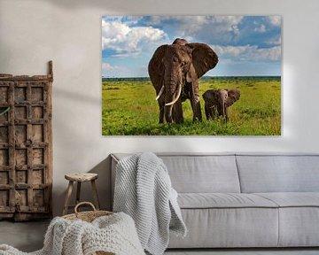 Mamma olifant met kleintje van Peter Michel