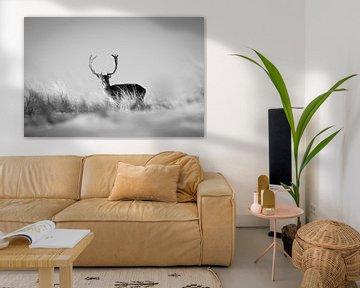 Hirsche im Schnee in Zandvoort von Jessica Brouwer