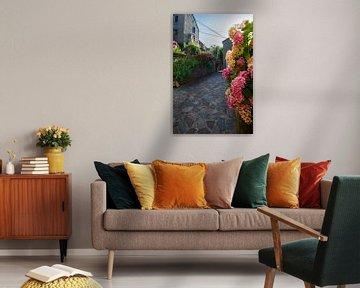 schmale Gasse mit Blumen von Youri Mahieu