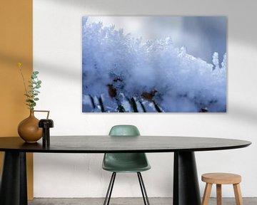 Makroaufnahme von Schnee in Drenthe von Karijn | Fine art Natuur en Reis Fotografie