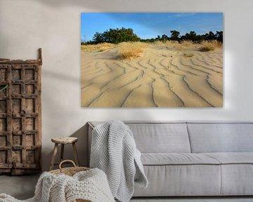 Lijnenspel en patronen in stuifzand Loonse en Drunense duinen van My Footprints