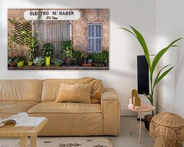 Franse  gevel met planten van Anouschka Hendriks