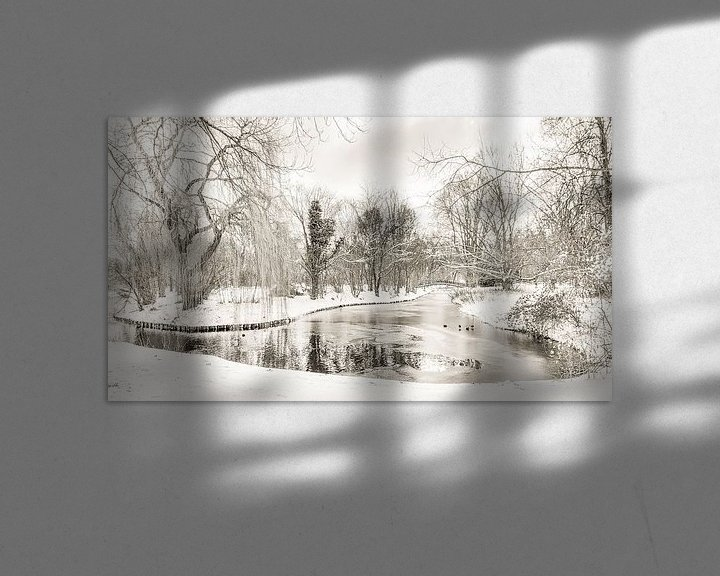 Impression: L'hiver au parc Buitenoord sur Ad Van Koppen