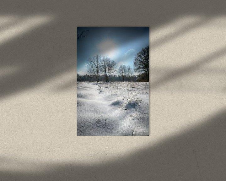Sfeerimpressie: Winter wonderland van Mark Bolijn