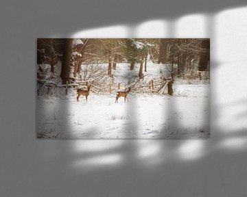 Zwei Rehe in einer Poortvliet-Landschaft von Pascal Raymond Dorland
