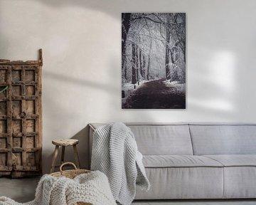 Winter in Vijlen van Floor Schreurs