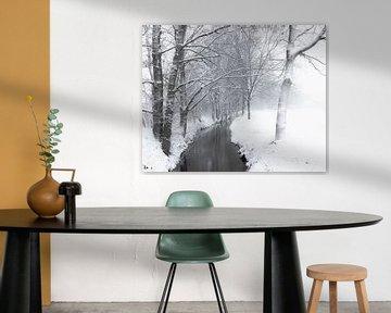 Winter wandeling langs een beekje op het platte land van Inez VAN DE WEYER