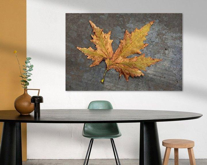 Impression: Feuilles d'automne sous la pluie sur du béton gris. sur Eyesmile Photography