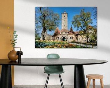 Kasteelpoort aan de kasteeltuin in Rothenburg Ob der Tauber van Animaflora PicsStock