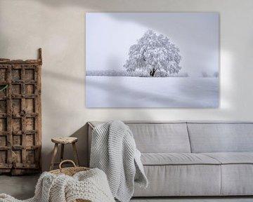 Winter Wonderland van Willi Schubert