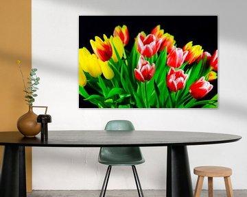 Tulpen von Thomas Jäger