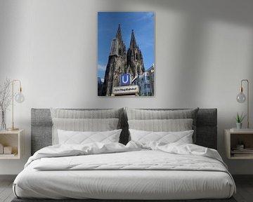 De torens van de Dom van Keulen vanuit het westen