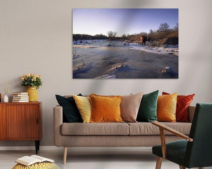 Sfeerimpressie: Schotse Hooglanders in ijzig landschap van Thom Brouwer